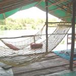 Stay in Machaan at Kolad, Wilder West Adventures